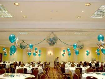 Pig farming business plan in south africa starting a party now in today world balloons are used in many ways like for home decoration party decoration marriage ceremonies decoration etc junglespirit Image collections